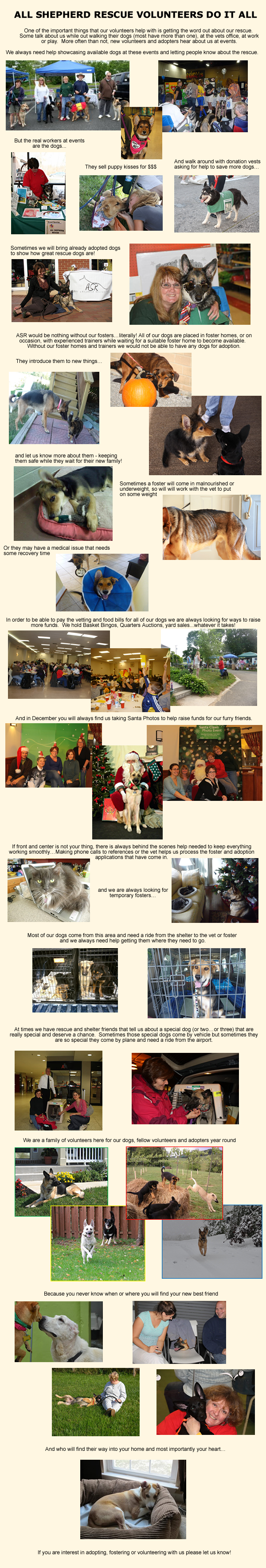 Web Image: Volunteer Collage