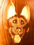 Halloween DOG Pumpkin