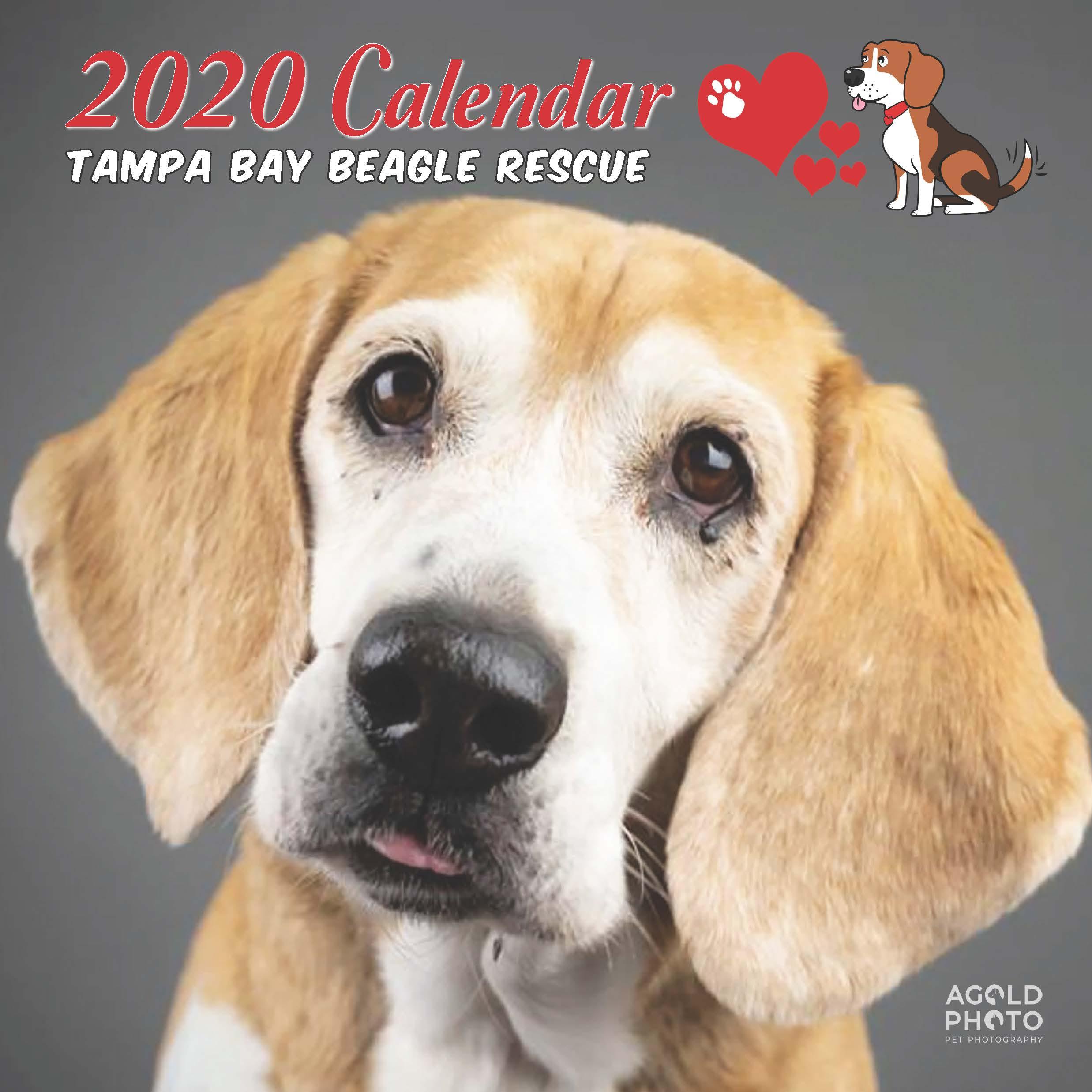 2020 TBBR Calendar Order