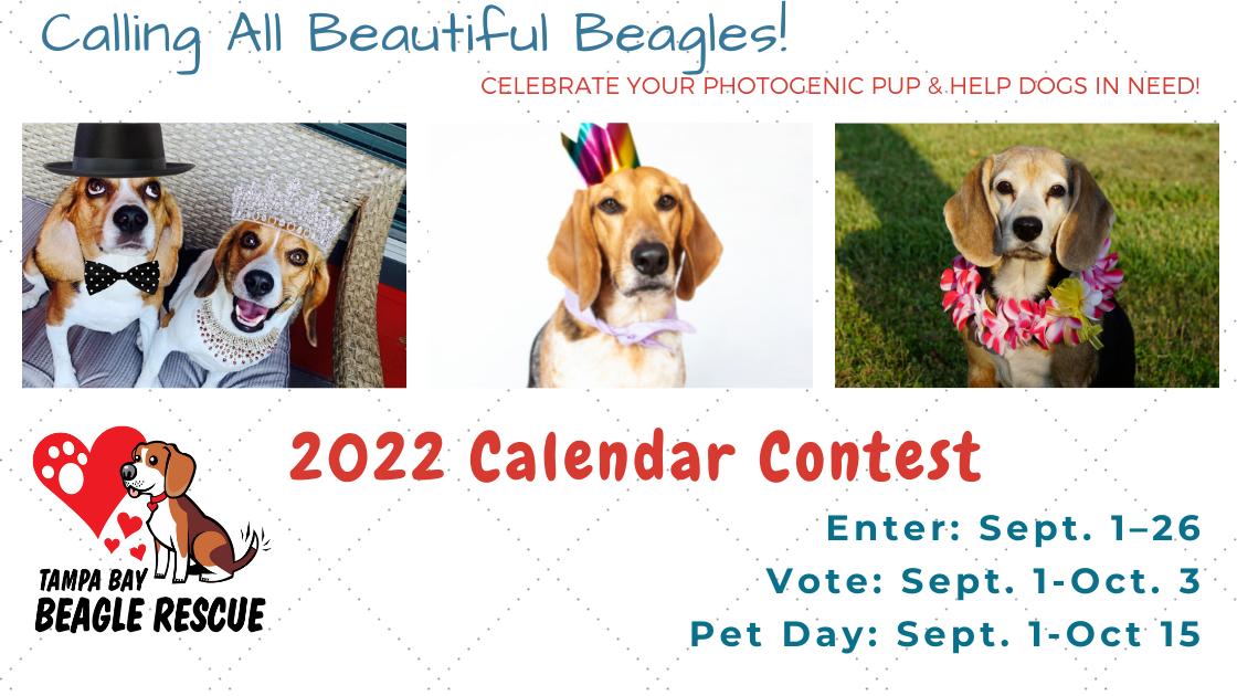 2022 TBBR Calendar Contest Website Banner