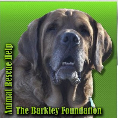 Barkley Logo