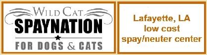 Web Image: Spay Nation Banner