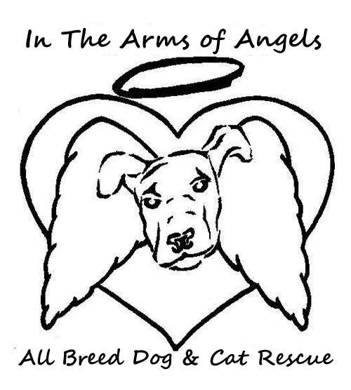 welcome  inthearmsofangels rescuegroups org