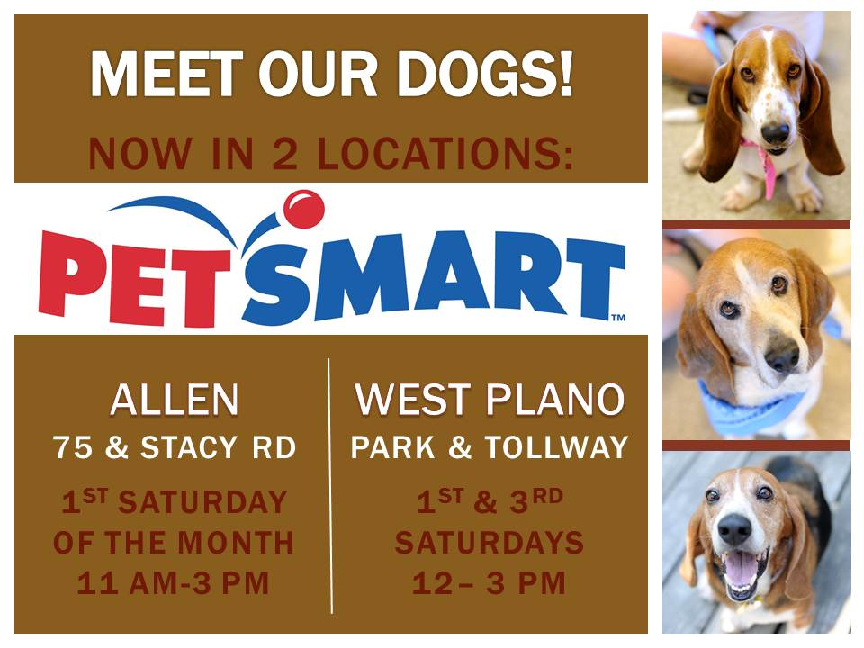 PetSmart Graphic