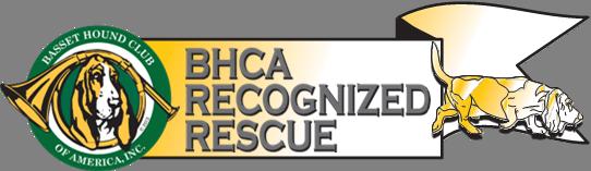 BHCA Banner
