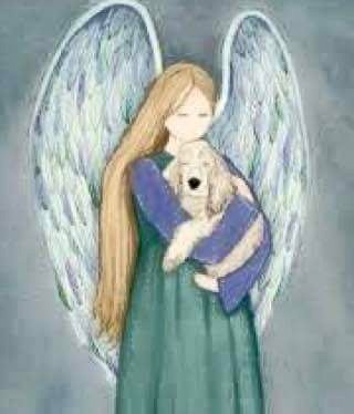 Angel with a Basset