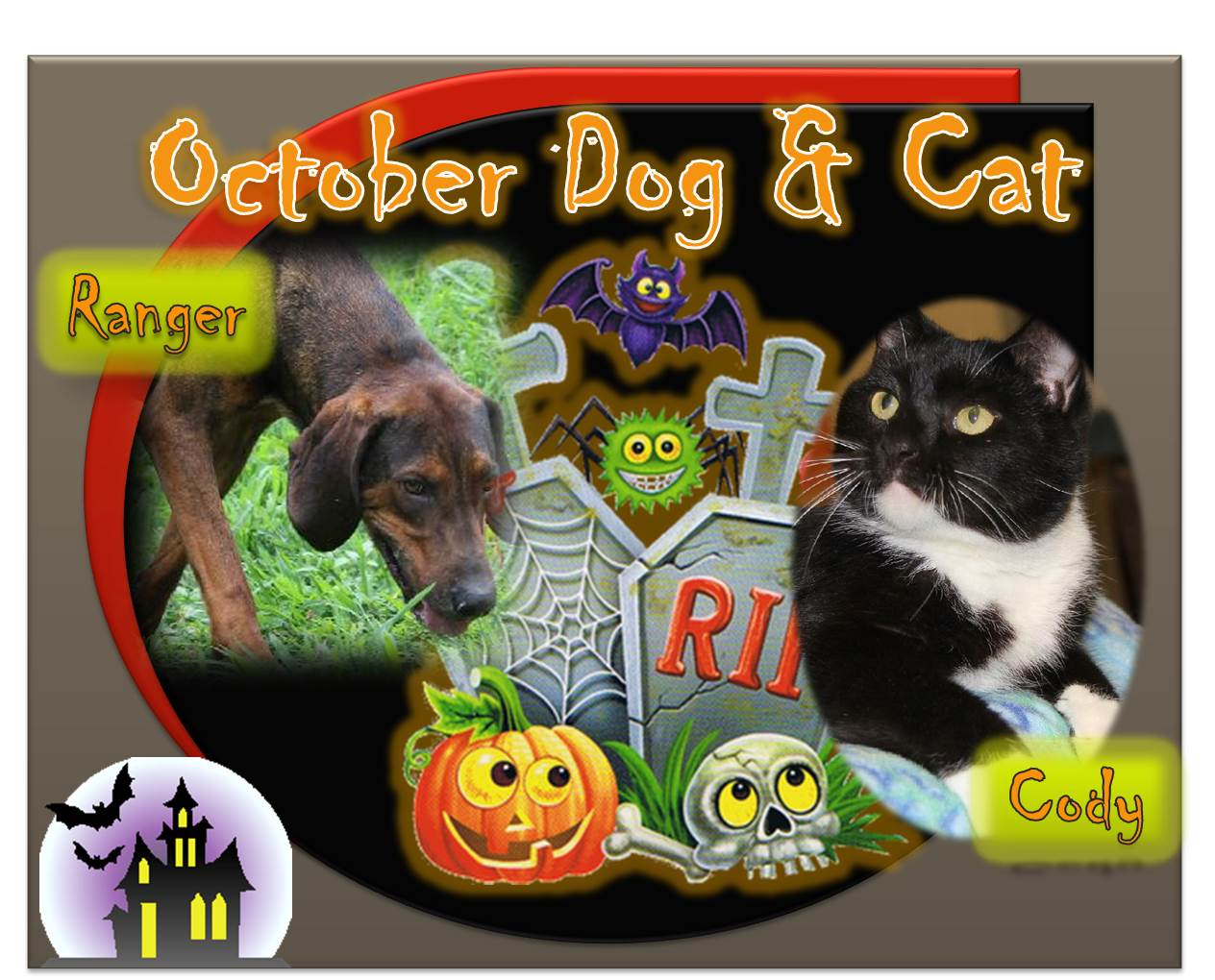 2014-10-01 - DOG and CAT of MONTH