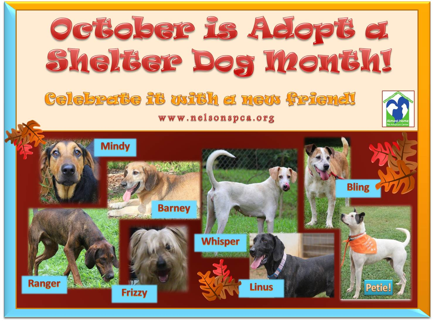 2014-10-1 Home Page - Adopt Shelter Dog Mo.