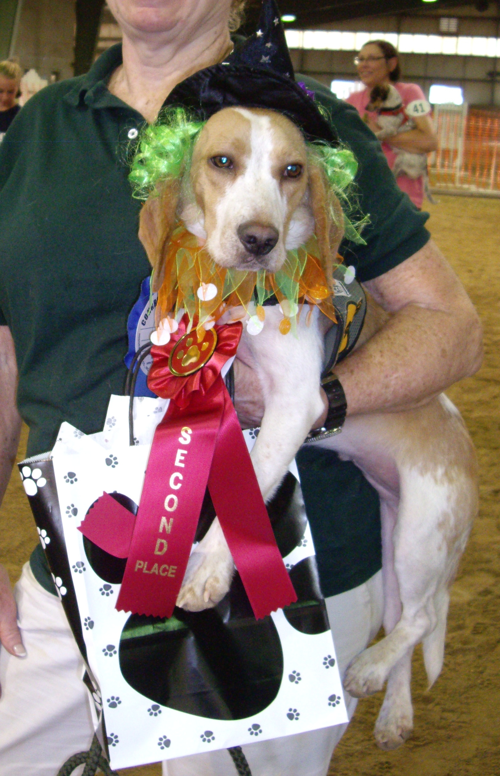 2014-08-17 - Best In Show - 2nd Place - Gizmo