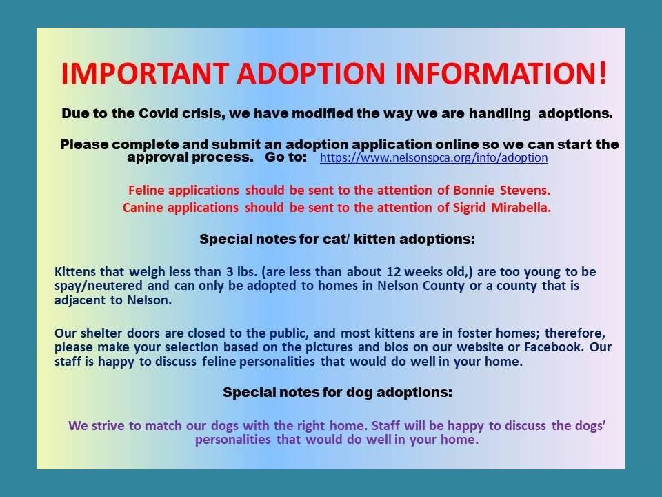 2020-06-01 covid adoption info