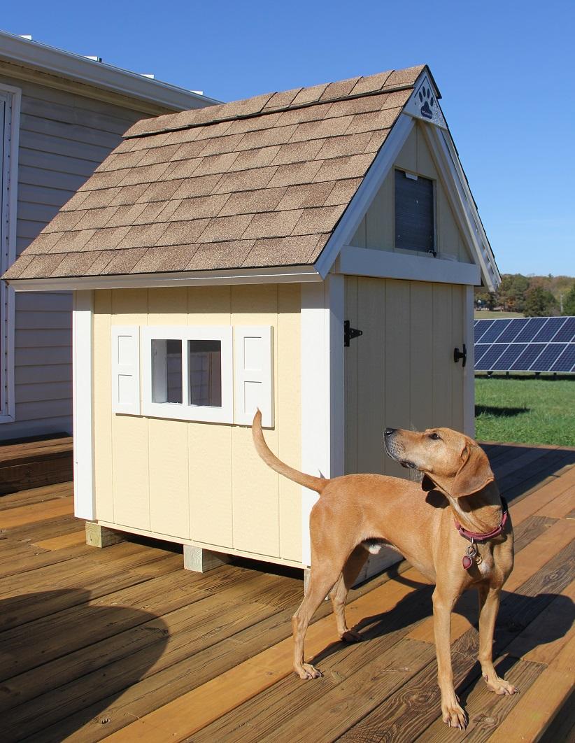 2016-11-16 - MERCHANTS dog house 2