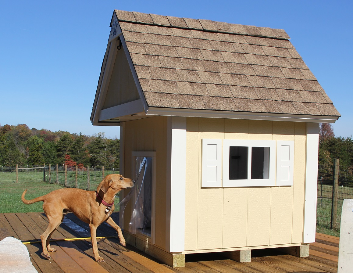 2016-11-16 - MERCHANTS dog house 1