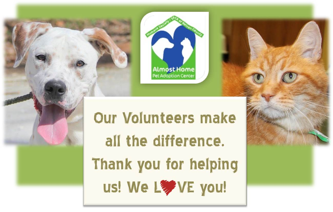 2015-04-17 TEMP Volunteer Appreciation Week