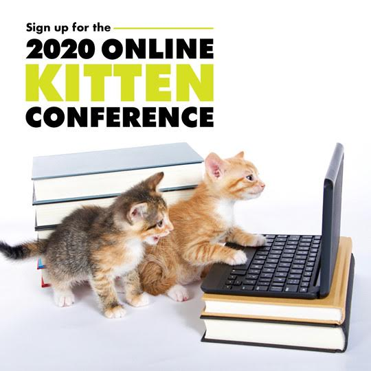 kittenconf