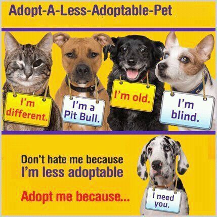 Less adoptable