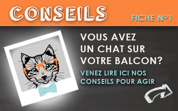 bandeau_petit_chat_balcon