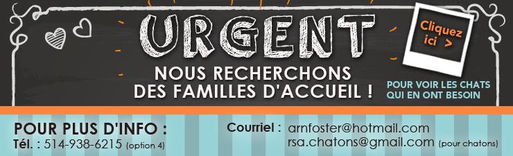 bandeau_famille_accueil_recherche