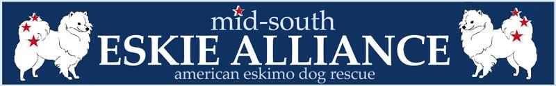 Web Image: Banner (header)