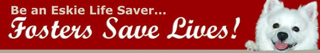 Web Image: rescue banner