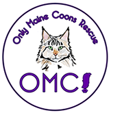 Only Maine Coons Rescue Logo