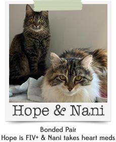 Hope & Nani