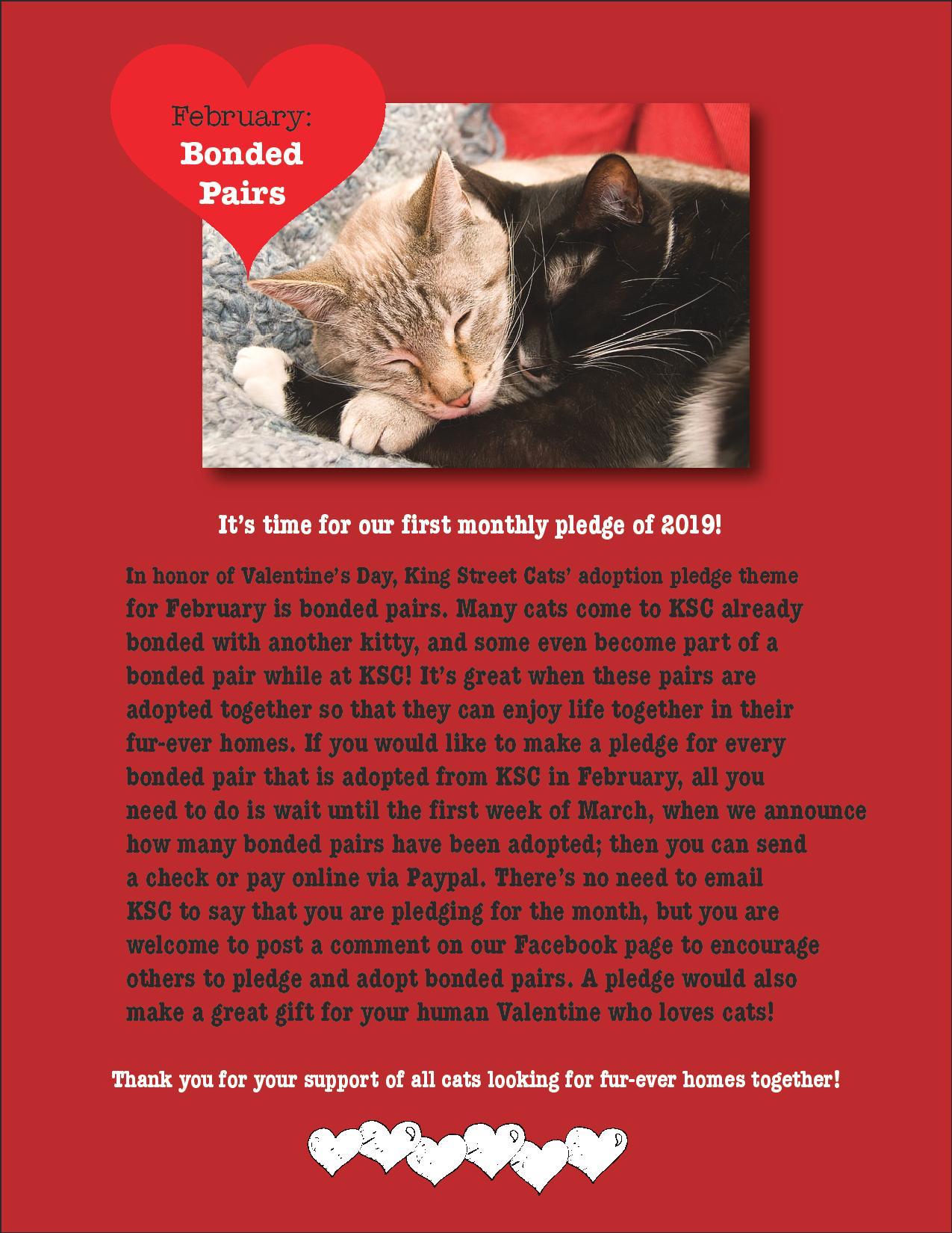 Adoption Pledge Feb 2019