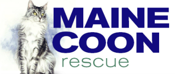 Maine Coon Rescue (MCR)