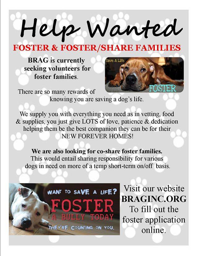 fostersneeded
