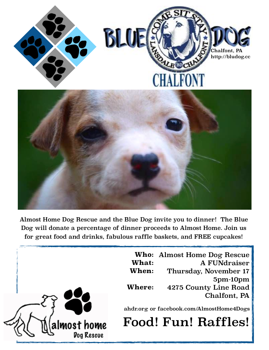 Almost home events meet greet concord pet sunday november 20th 2016 1200 pm until 0200 pm location concord pet at cutters mill chalfont 215 997 5052 m4hsunfo