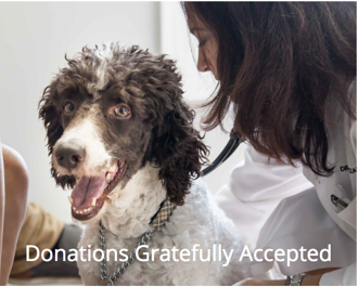 Donations Gratefully Accepted