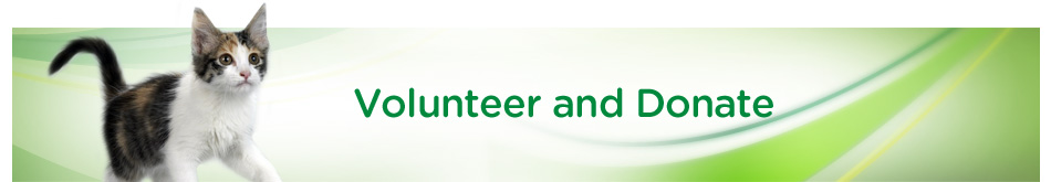 Volunteer & Donate Banner 7-11