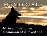 Memorial Donations - Dog
