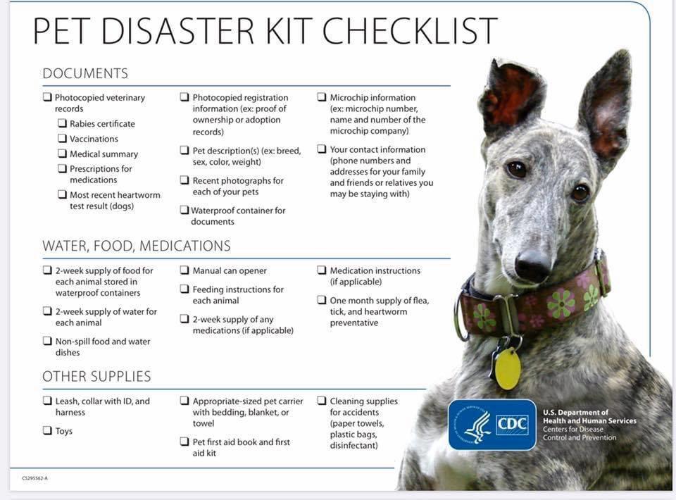 Pet Disaster Kit
