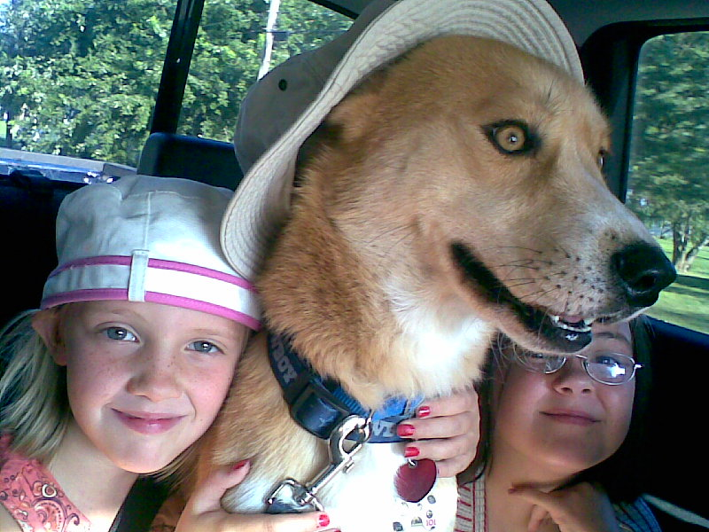 dog and children