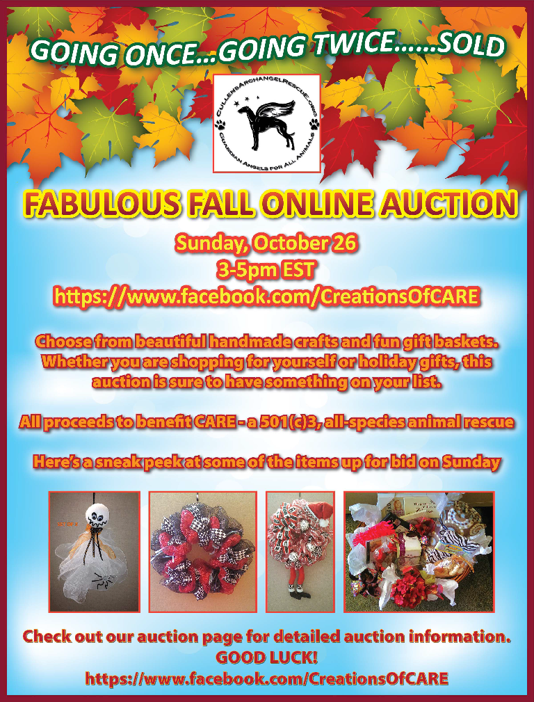 CARE Fall Auction 10.26.14
