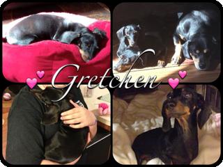 Gretchen RB 2013