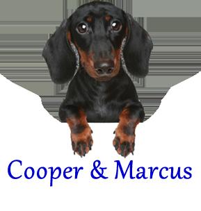 Cooper & Marcus MEM 2015