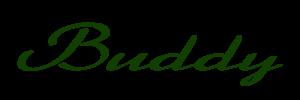 Buddy SN Text 2014