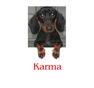 Karma MEM 2017