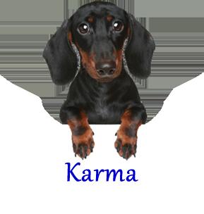 Karma MEM 2015