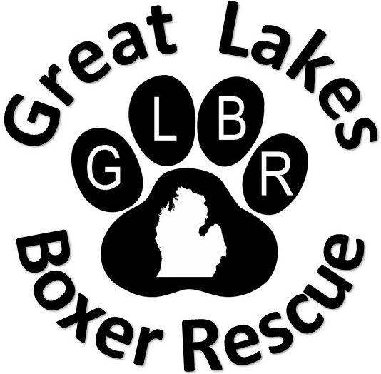 Great Lakes Boxer Rescue