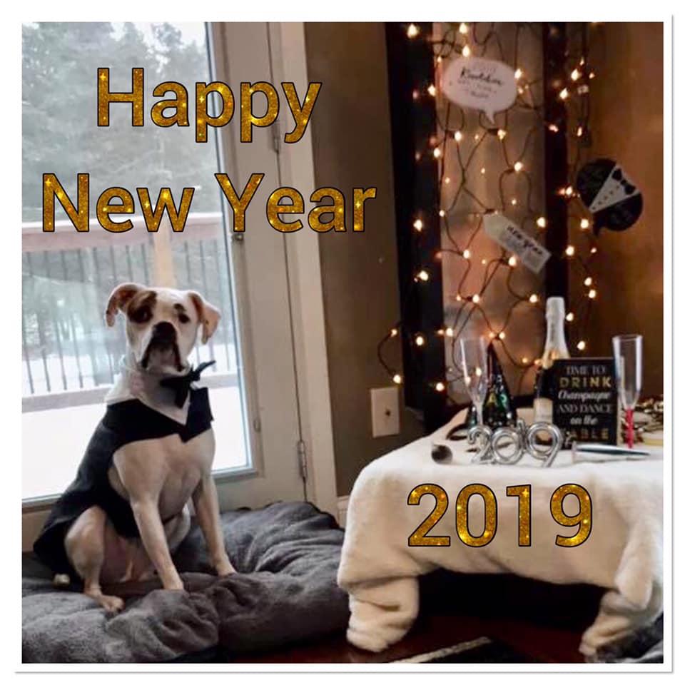 New Year - Hobbs