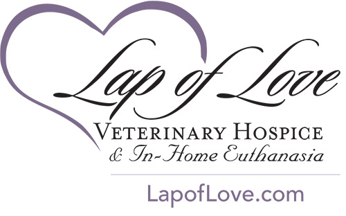 Lap of Love Veterinary Hospital