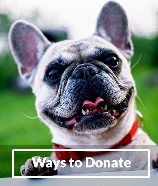 Ways to Donate