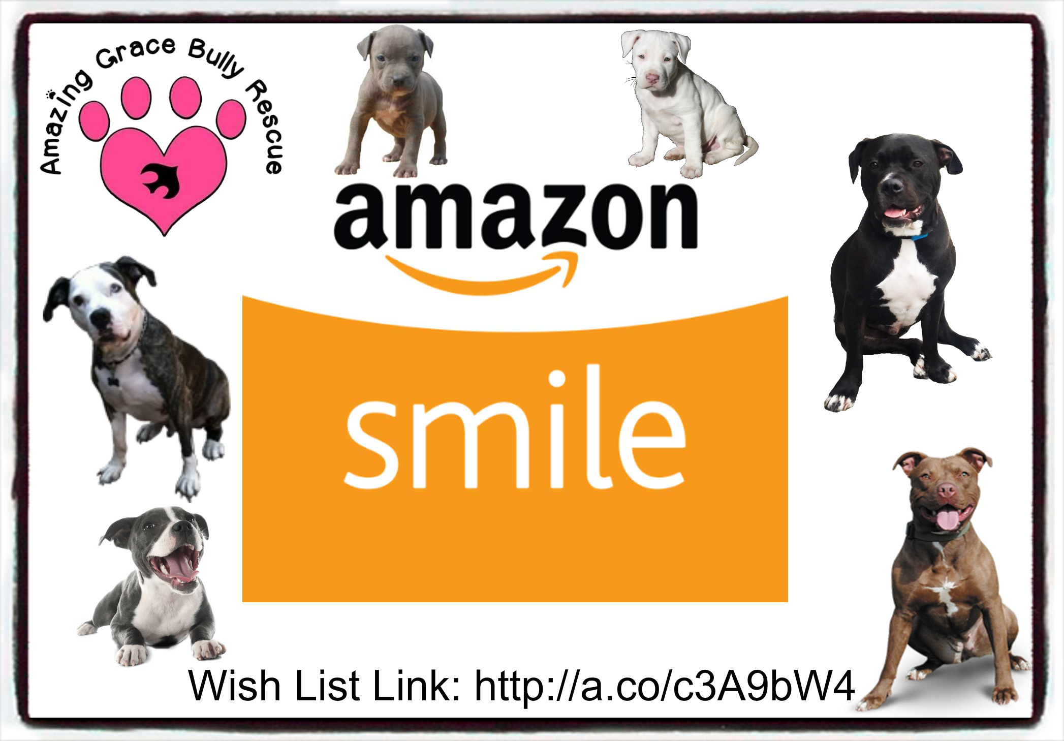 Amazon Smile Wish List