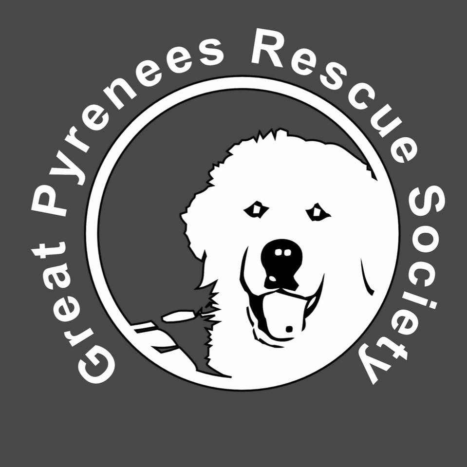 GPRS Logo