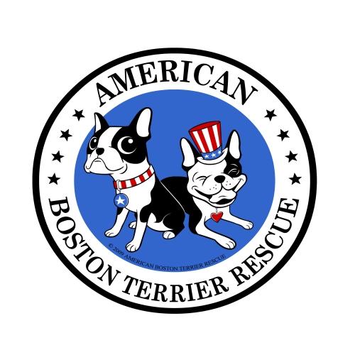Dog For Adoption - Boston Terrier, American Pit Bull Terrier in Missouri  City, Texas
