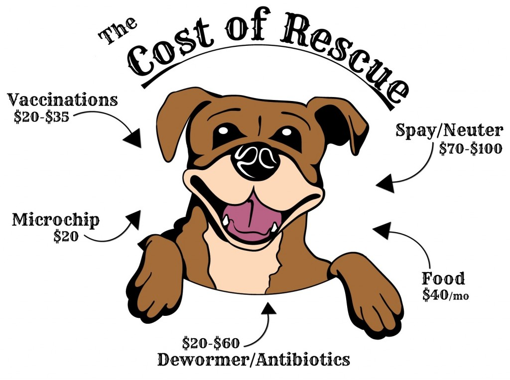 Give A Dog A Home Rescue