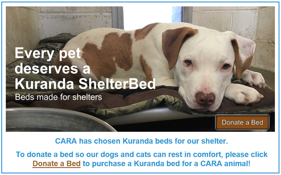 Donate Kuranda Bed