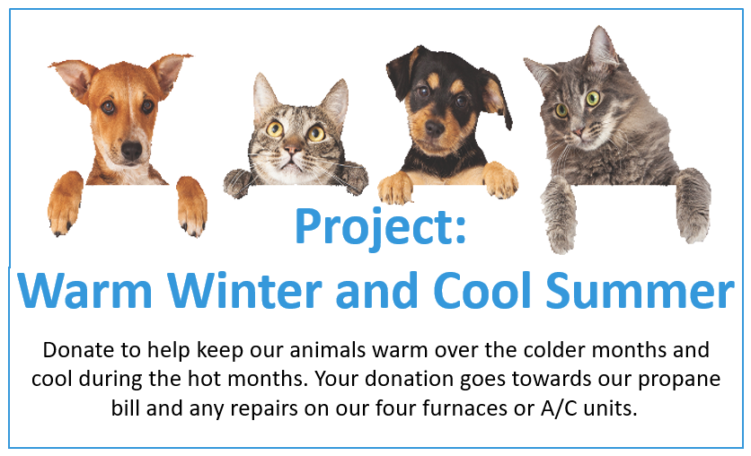 Donate - Project Summer/Winter